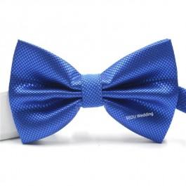 (Blue) Bow Tie 18