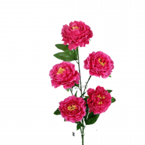 (Ready Stock) Peony Flower CNY